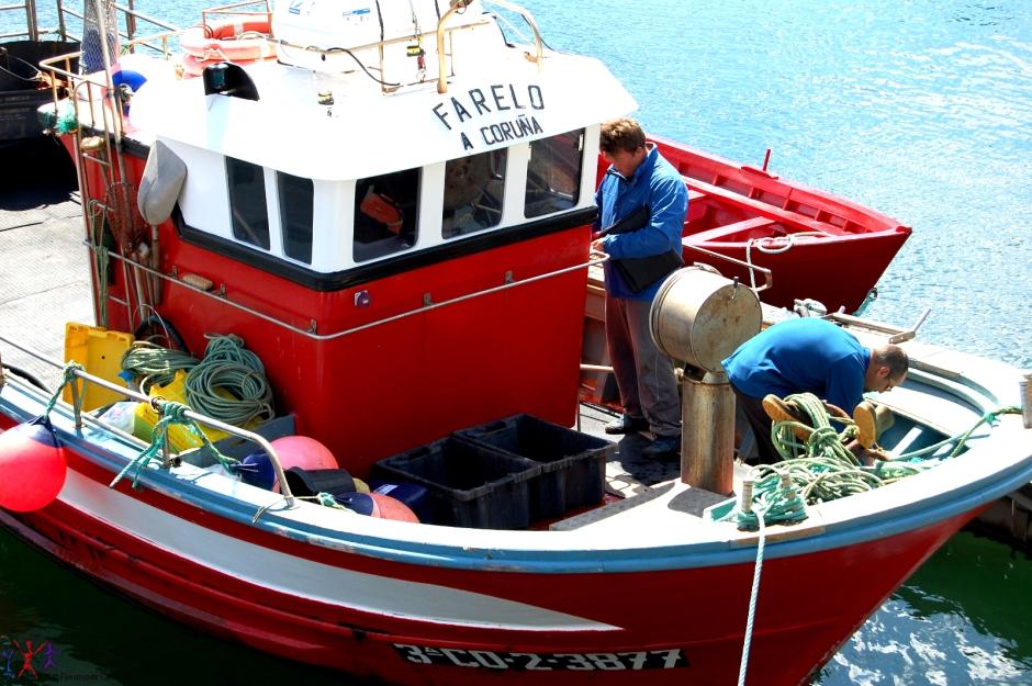 Barche dei pescatori nel porto di La Coruna