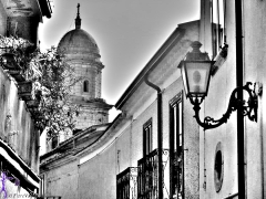 FioreVagabondO in Campania: Nusco, Atene Irpina